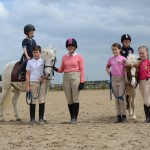 fettercairn, dublin, youth project, horse riding lessons