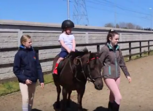 Down Syndrome Dublin Open Day at Fettercairn Youth Horse Project