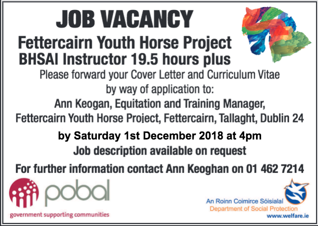 Fettercairn Youth Horse Project - South Dublin\'s Community Riding ...